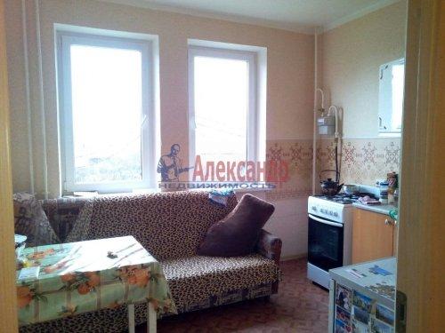1-комнатная квартира (34м2) на продажу по адресу Парицы дер., 3— фото 4 из 6