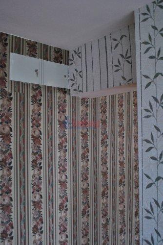 3-комнатная квартира (52м2) на продажу по адресу Рябово пос., 2— фото 3 из 9