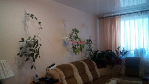 1-комнатная квартира (35м2) на продажу по адресу Щеглово пос., 79— фото 5 из 15