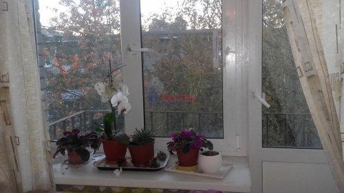 2-комнатная квартира (51м2) на продажу по адресу Петергоф г., Халтурина ул.— фото 1 из 14