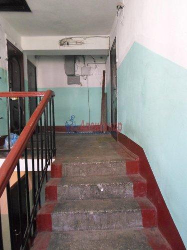 1-комнатная квартира (33м2) на продажу по адресу Раздолье пос., Центральная ул., 3— фото 12 из 13