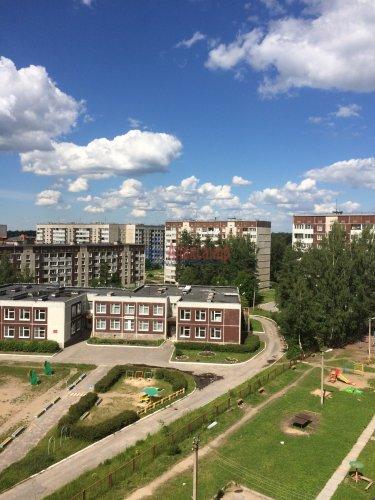2-комнатная квартира (61м2) на продажу по адресу Отрадное г., Гагарина ул., 20— фото 4 из 4