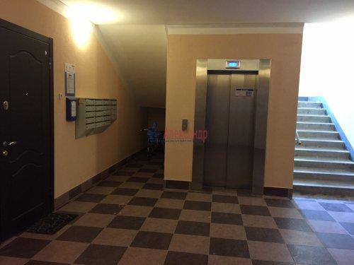 2-комнатная квартира (82м2) на продажу по адресу Пушкин г., Анциферовская (Гуммолосары) ул., 12— фото 10 из 16