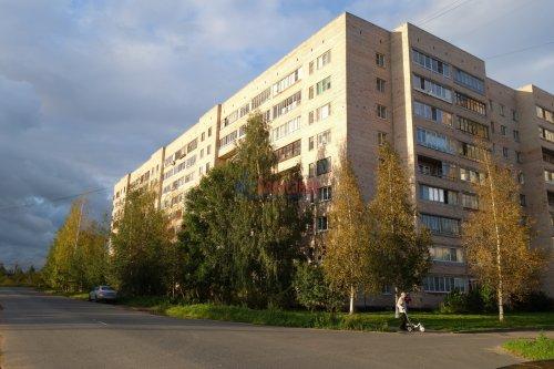 2-комнатная квартира (49м2) на продажу по адресу Металлострой пос., Богайчука ул., 24— фото 4 из 22