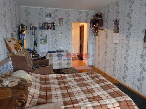 3-комнатная квартира (73м2) на продажу по адресу Новый Свет пос., 42— фото 9 из 16