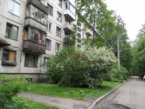1-комнатная квартира (31м2) на продажу по адресу Карпинского ул., 38— фото 13 из 13