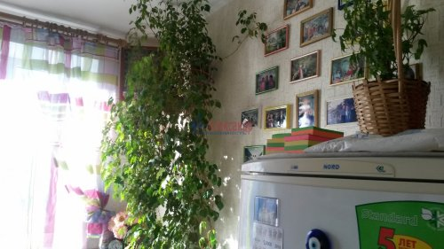 1-комнатная квартира (34м2) на продажу по адресу Культуры пр., 29— фото 6 из 18