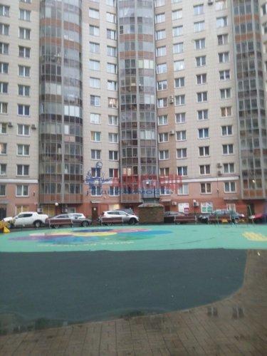 2-комнатная квартира (80м2) на продажу по адресу Просвещения просп., 99— фото 2 из 13