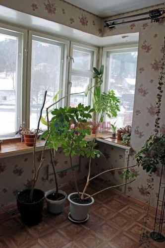 3-комнатная квартира (82м2) на продажу по адресу Лахденпохья г., Советская ул., 8— фото 8 из 16