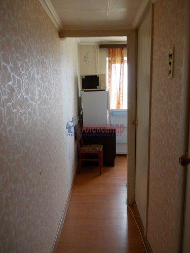1-комнатная квартира (31м2) на продажу по адресу Оржицы дер., 25— фото 3 из 7