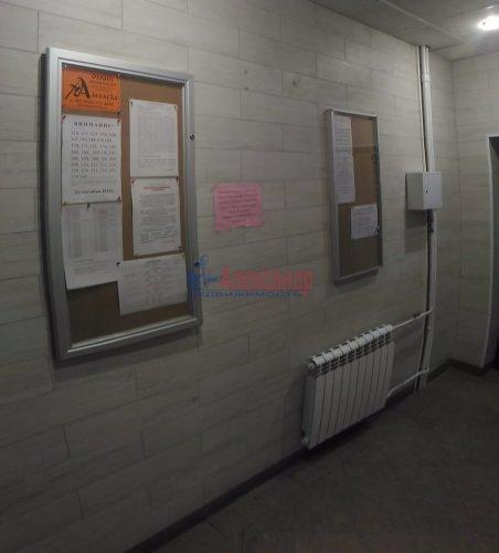 1-комнатная квартира (37м2) на продажу по адресу Мурино пос., Оборонная ул., 2— фото 22 из 23