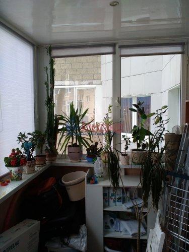 1-комнатная квартира (46м2) на продажу по адресу Науки пр., 17— фото 16 из 21