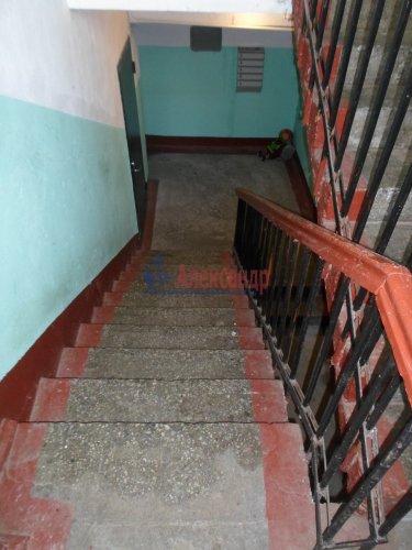 1-комнатная квартира (33м2) на продажу по адресу Раздолье пос., Центральная ул., 3— фото 13 из 13