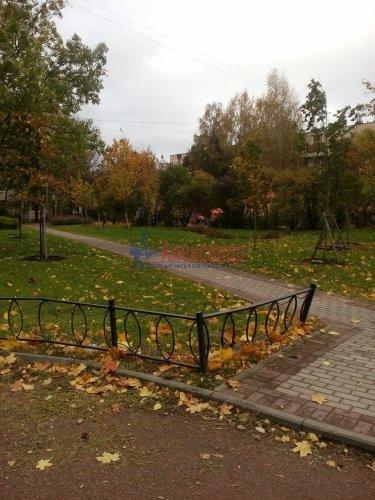 3-комнатная квартира (56м2) на продажу по адресу Пушкин г., Павловское шос., 27— фото 4 из 20