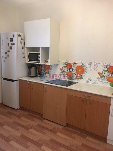 2-комнатная квартира (60м2) на продажу по адресу Юнтоловский пр., 53— фото 11 из 19