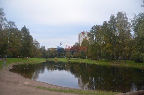 1-комнатная квартира (31м2) на продажу по адресу Орбели ул., 27— фото 13 из 20
