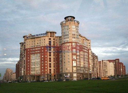 1-комнатная квартира (50м2) на продажу по адресу Савушкина ул., 140— фото 2 из 5