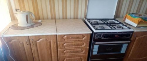 1-комнатная квартира (30м2) на продажу по адресу Ваганово дер.— фото 1 из 7