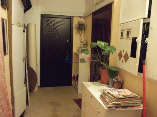 Комната в 3-комнатной квартире (79м2) на продажу по адресу Индустриальный пр., 29— фото 11 из 11