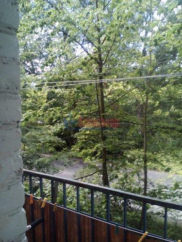 Комната в 3-комнатной квартире (76м2) на продажу по адресу Ломоносов г., Михайловская ул., 24— фото 9 из 15