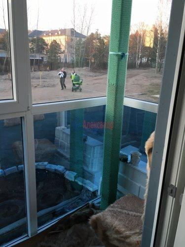 1-комнатная квартира (51м2) на продажу по адресу Приозерск г., Чапаева ул., 16— фото 11 из 13
