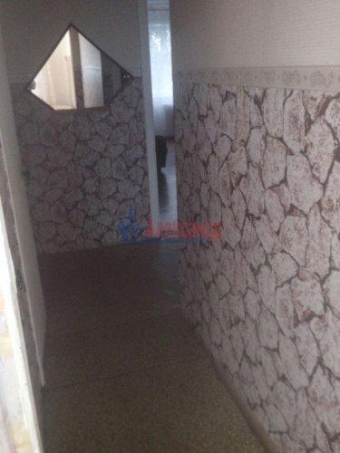 2-комнатная квартира (48м2) на продажу по адресу Красная Долина пос., 35— фото 4 из 7