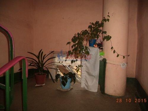 2-комнатная квартира (53м2) на продажу по адресу Вындин Остров дер., 12— фото 12 из 17