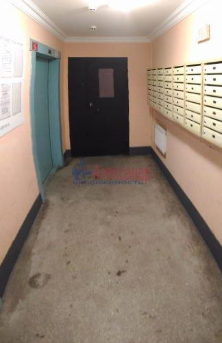 1-комнатная квартира (32м2) на продажу по адресу Мурино пос., Оборонная ул., 2— фото 19 из 19