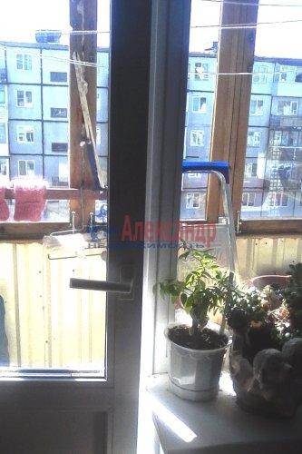 1-комнатная квартира (30м2) на продажу по адресу Оржицы дер., 13— фото 6 из 15