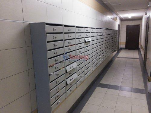 1-комнатная квартира (37м2) на продажу по адресу Парголово пос., Федора Абрамова ул., 18— фото 5 из 15