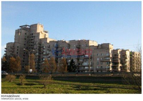 1-комнатная квартира (37м2) на продажу по адресу Сестрорецк г., Приморское шос., 350— фото 2 из 13