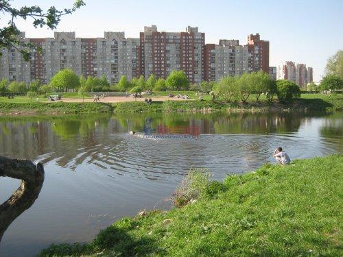 1-комнатная квартира (33м2) на продажу по адресу Димитрова ул., 12— фото 4 из 7