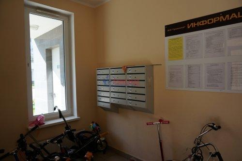 1-комнатная квартира (42м2) на продажу по адресу Пушкин г., Ленинградская ул., 46— фото 3 из 5