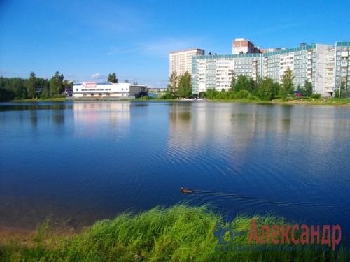 3-комнатная квартира (60м2) на продажу по адресу Новое Девяткино дер., 49— фото 5 из 16