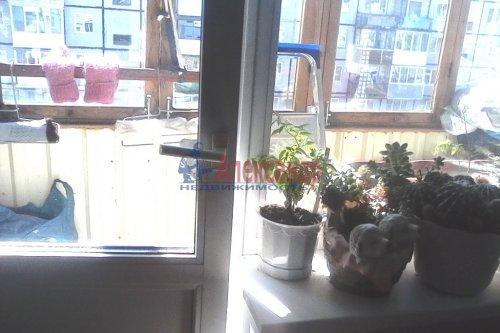 1-комнатная квартира (30м2) на продажу по адресу Оржицы дер., 13— фото 7 из 15