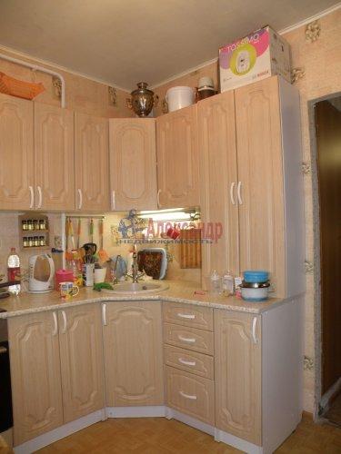 3-комнатная квартира (70м2) на продажу по адресу Романовка пос., 31— фото 3 из 11
