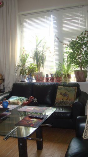 4-комнатная квартира (117м2) на продажу по адресу Кузнецова пр., 22— фото 6 из 21