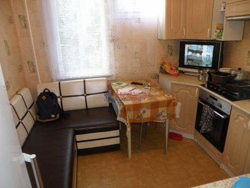 3-комнатная квартира (70м2) на продажу по адресу Романовка пос., 31— фото 4 из 11