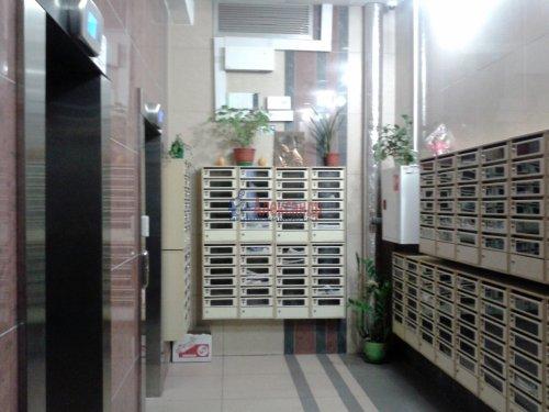 1-комнатная квартира (37м2) на продажу по адресу Мурино пос., Новая ул., 7— фото 14 из 20