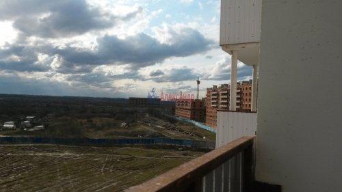 2-комнатная квартира (54м2) на продажу по адресу Шушары пос., Московское шос., 288— фото 12 из 12