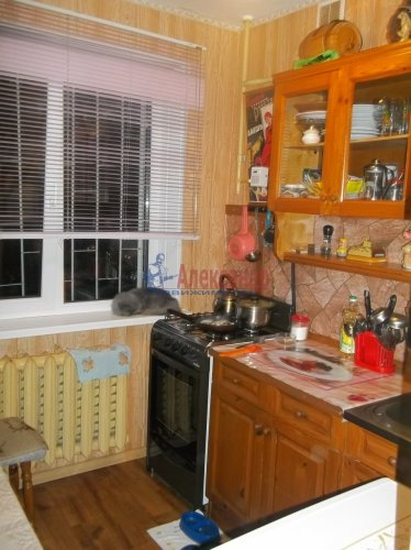 2-комнатная квартира (44м2) на продажу по адресу Раздолье пос., Центральная ул., 9— фото 9 из 12