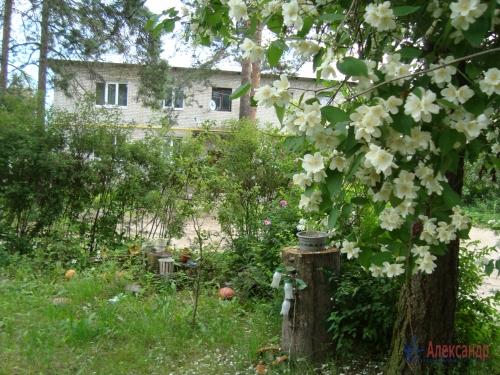 2-комнатная квартира (45м2) на продажу по адресу Толмачево пгт., 5— фото 3 из 16