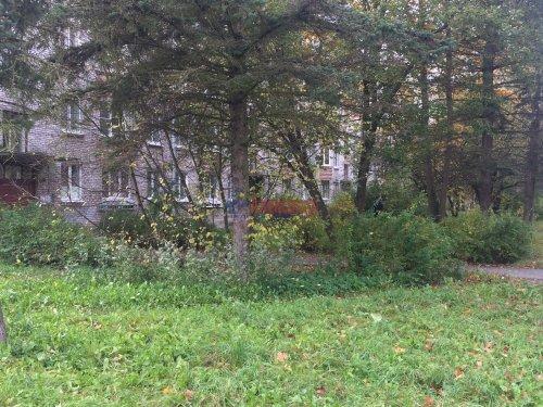 2-комнатная квартира (44м2) на продажу по адресу Петергоф г., Разведчиков бул., 14— фото 5 из 9