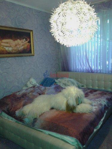 2-комнатная квартира (46м2) на продажу по адресу Тимуровская ул., 22— фото 4 из 5