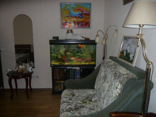 1-комнатная квартира (46м2) на продажу по адресу Науки пр., 17— фото 12 из 18