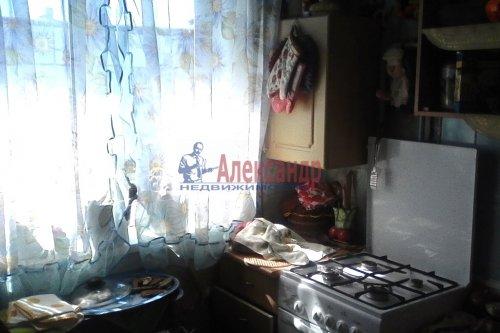1-комнатная квартира (30м2) на продажу по адресу Оржицы дер., 13— фото 8 из 15