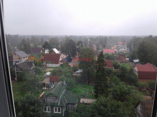 2-комнатная квартира (50м2) на продажу по адресу Всеволожск г., Плоткина ул., 9— фото 5 из 5