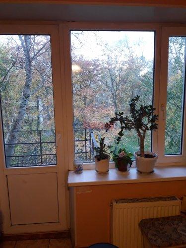 Комната в 8-комнатной квартире (196м2) на продажу по адресу Демьяна Бедного ул., 29— фото 10 из 12