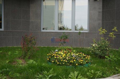 5-комнатная квартира (187м2) на продажу по адресу Пушкин г., Ленинградская ул., 46— фото 5 из 6