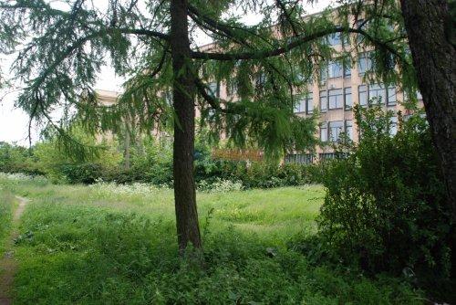 3-комнатная квартира (81м2) на продажу по адресу Таврический пер., 12— фото 16 из 16